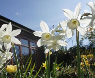 Ellens Green &  Rudgwick Gardening Association