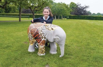 Wild Facelift for Fundraising Elephant!