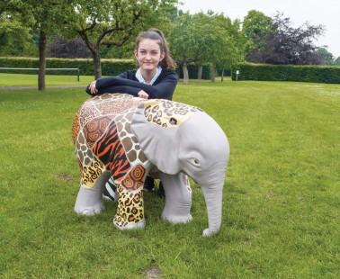 Wild Facelift for Fundraising Elephant!