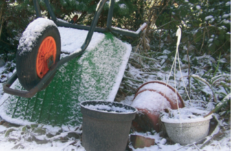 Are You Getting the Most Out of Looking After Your Garden In January?
