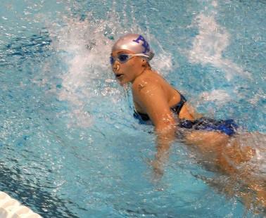 Cranleigh Amateur  Swimming Club – Training In Full Flow